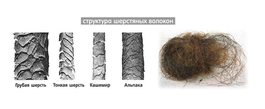 Шерстяные волокна под микроскопом